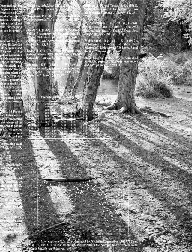 black and white photos of trees overlaid with scientific data in white text.