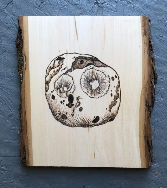 This image shows a vertical slice of wood with an image of the Psyche asteroid made using woodburning.