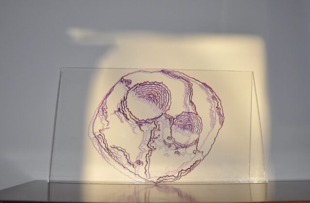 This piece is 24 inches by 13.5 inches. Red and black ink marks on 0.25 inch plexiglass were utilized to create lines that outline the shape of Psyche. There are two major craters and a series of rifts on the surface that appear pockmarked with small craters. As light shines through the plexiglass, red and blue shadows in the shape of Psyche are cast onto a white background.